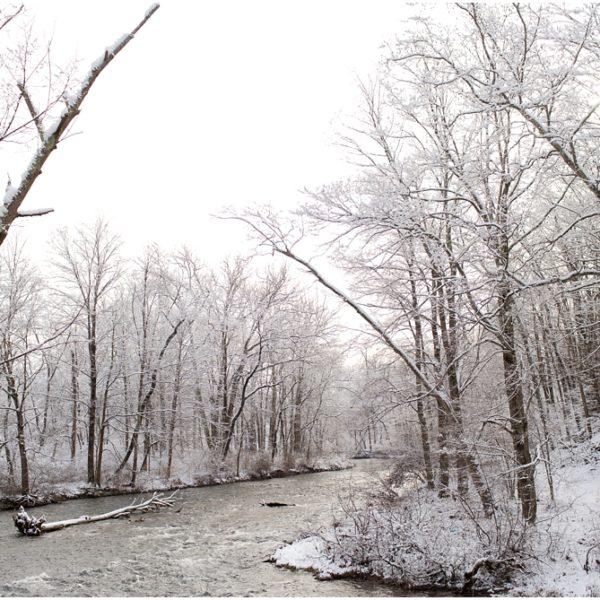 A Blanket of Snow   Latrobe Photographer