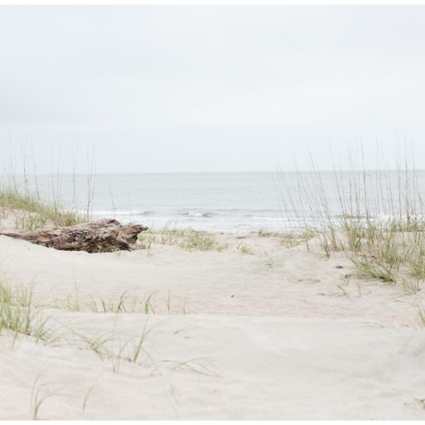 Welcome to Bald Head Island Life | Bald Head Island Wedding Photographers